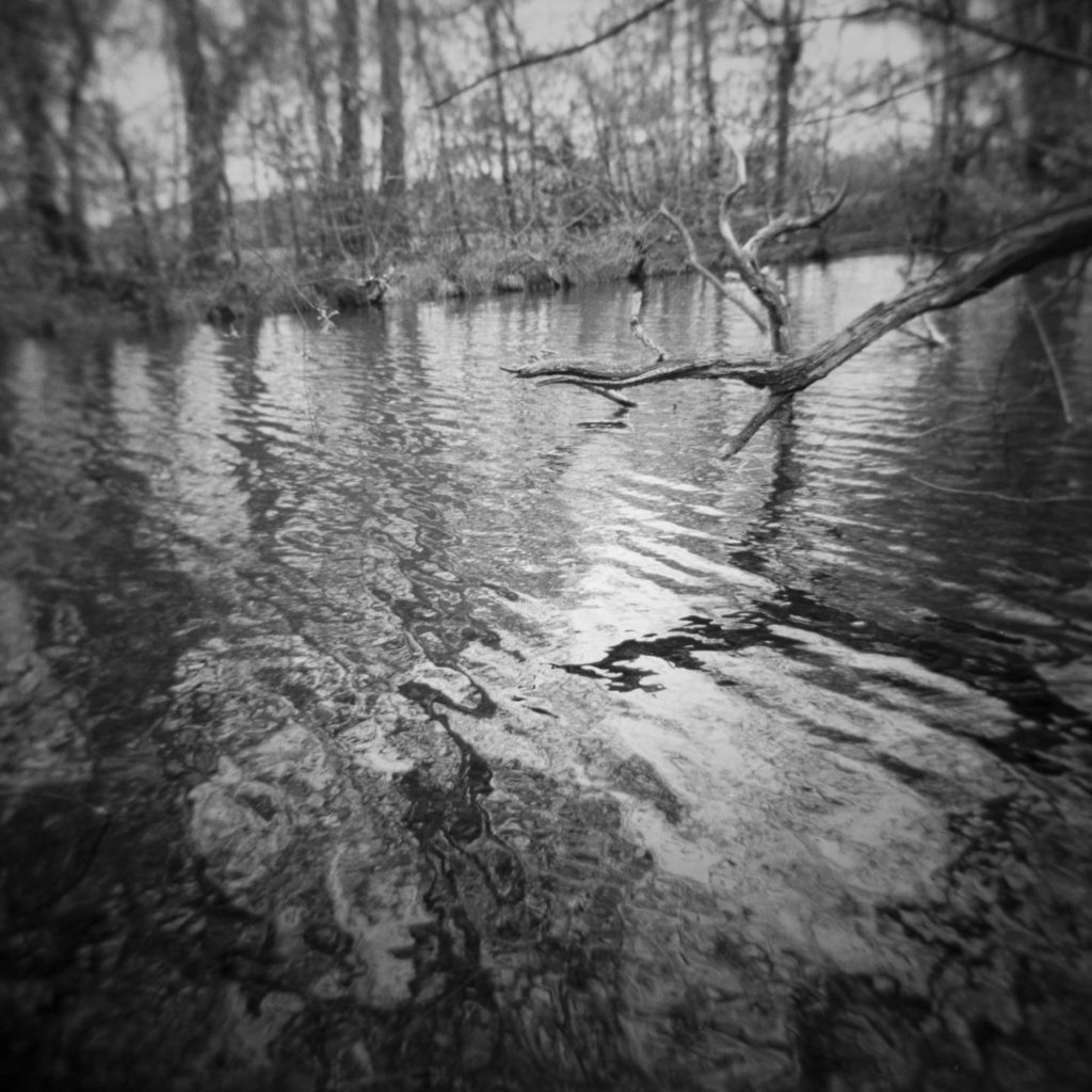 Cusworth Hall Lower Pond Study 3