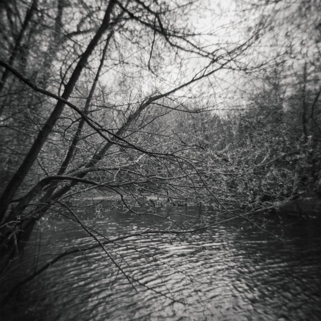 Cusworth Hall Lower Pond Study1
