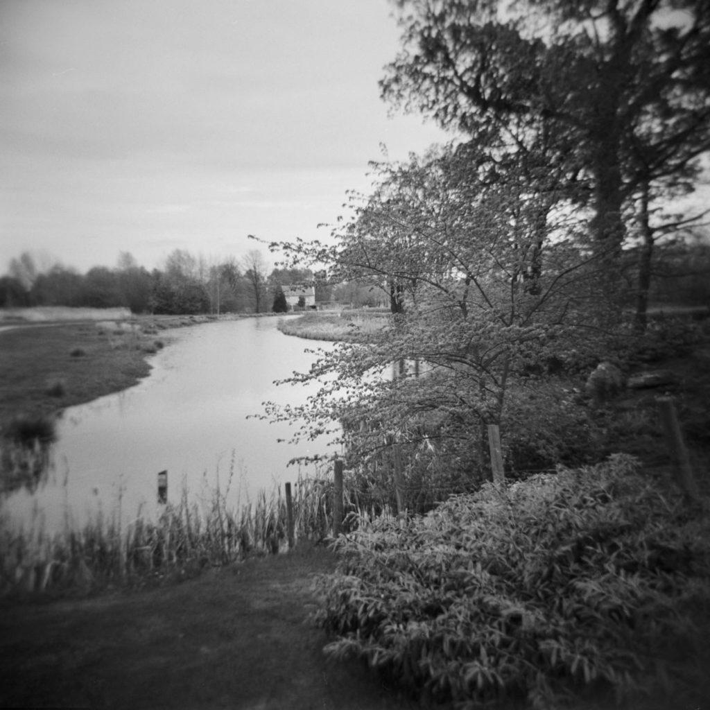 Cusworth Hall Lower Pond Study 4